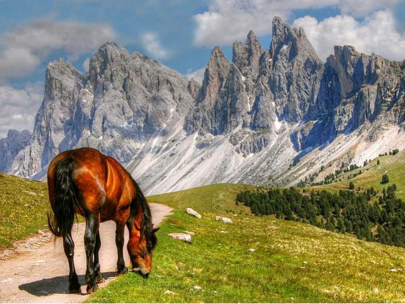 Val Gardena: Dolomite Mountain Walking and Ladin Culture